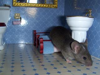 mouse in dollhouse bathroom