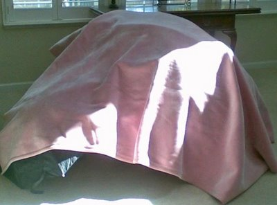 pink igloo fort