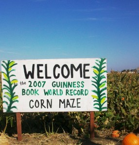 world record corn maze