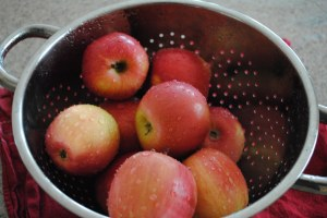 fresh apples in colander