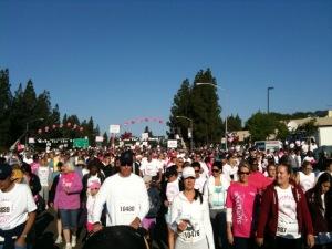 Sacramento's Race for the Cure
