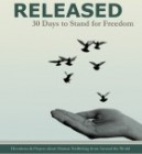Released book Genny Heikka Contributor