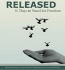 Released book Genny Heikka Contributor